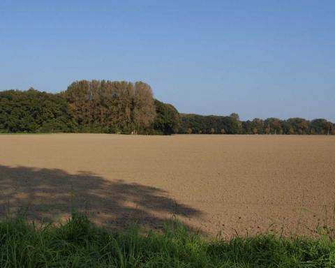Risorse agrarie