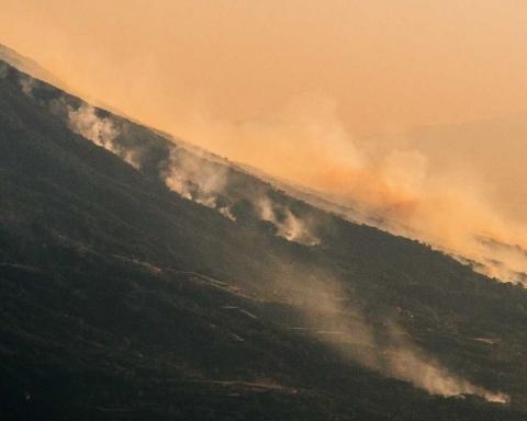 Incendi nel parco nazionale del Vesuvio
