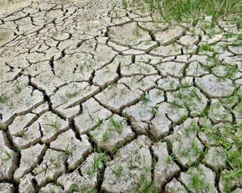 Crisi idrica in Puglia