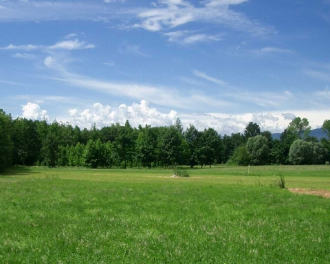 Difesa dell'ambiente e parchi