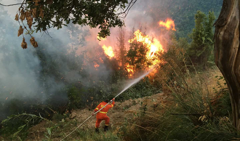 Emergenza incendi sul Pollino