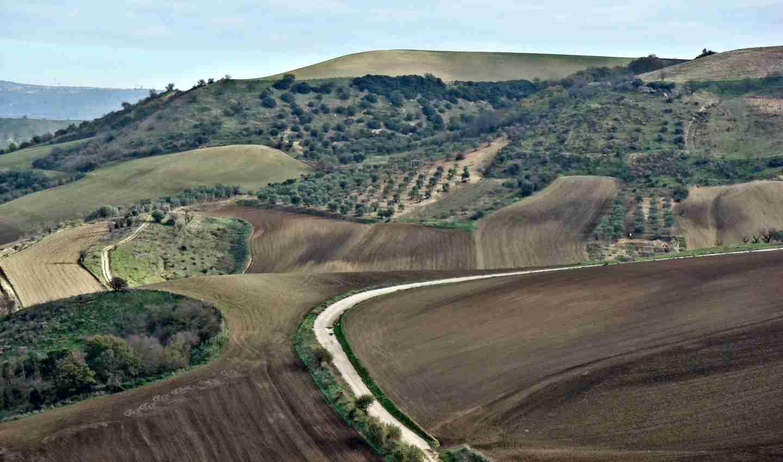 Tratturi della transumanza: beni Unesco da salvare