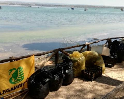 Rifiuti raccolta da Legambiente su una spiaggetta di Parco Cimino a Taranto