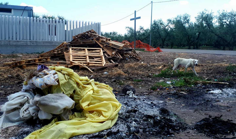 Immagini dal ghetto Tre Titoli di Cerignola, in provincia di Foggia