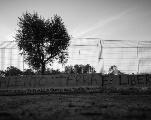 Terra e dissenso, Matthias Canapini