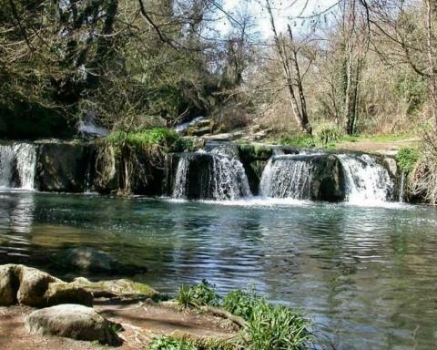 Parco del Treja, Lazio