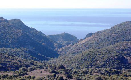 Sardegna, ecco il nuovo (quasi completo) inventario regionale delle terre civiche